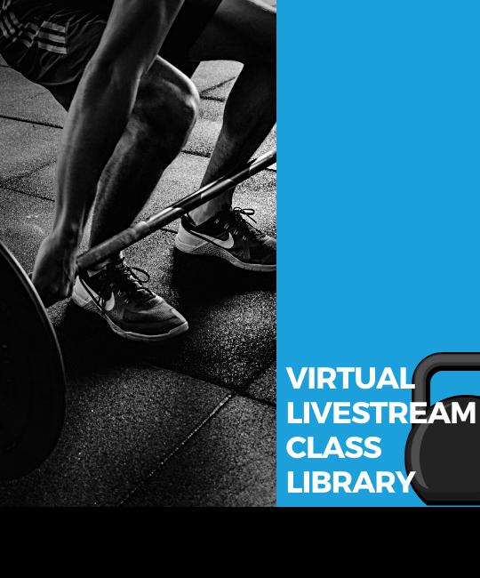 Virtual Class Library